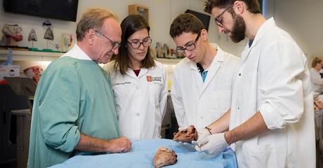 Étudiants manipulant un coeur durant un cours d'anatomie