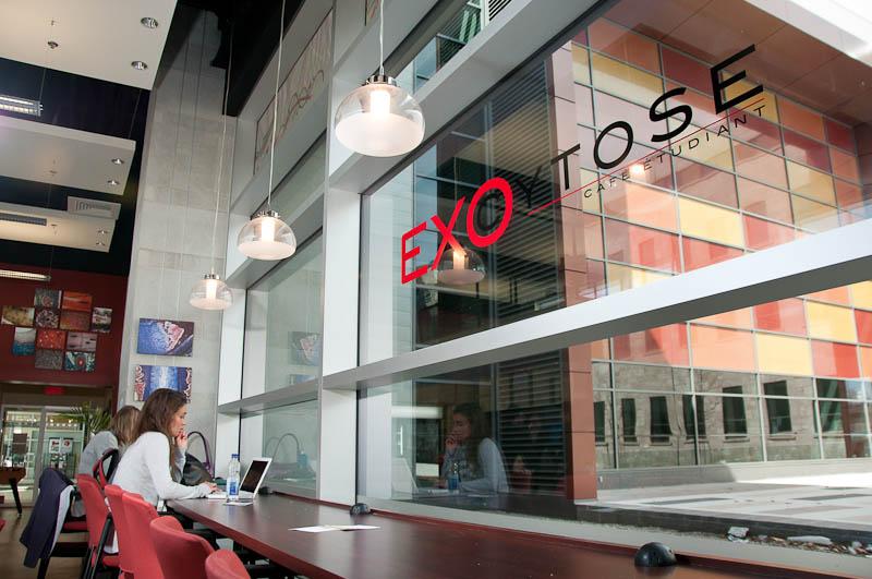 Photo de la vitrine du Café Exocytose
