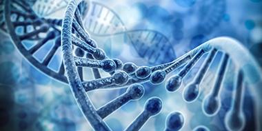3eJournée de la recherche du département de biologie moléculaire, de biochimie médicale et de pathologie