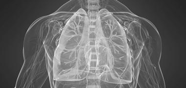 Immunothérapie dans le cancer du poumon