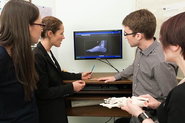 Enseignement en chirurgie orthopédique