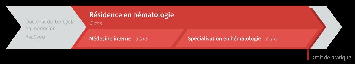 Graphique de cheminement résidence en hématologie