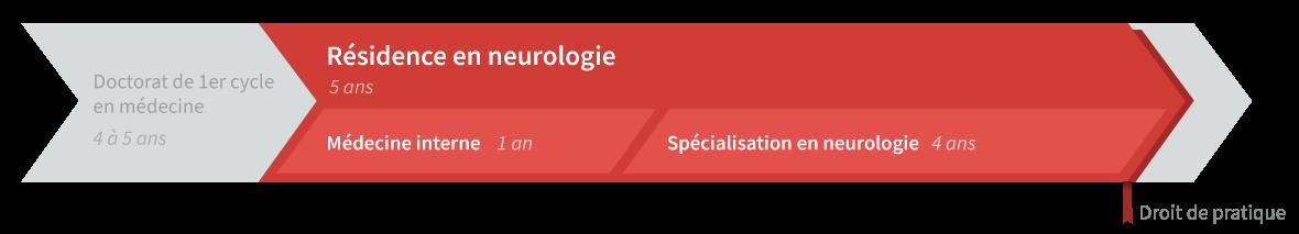 Graphique de cheminement résidence en neurologie