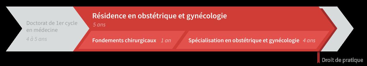 Graphique de cheminement résidence en obstétrique-gynécologie